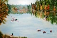 ducks-6-18x24